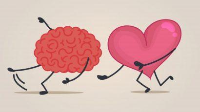 Cum se indragosteste creierul