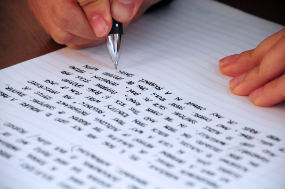Ceea ce spun si ceea ce scriu este o proiecte a mintii mele