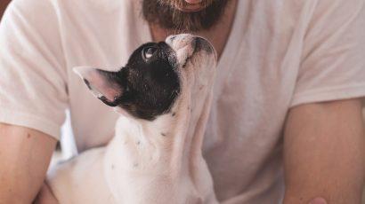Oxitocina, legatura dintre om si caine